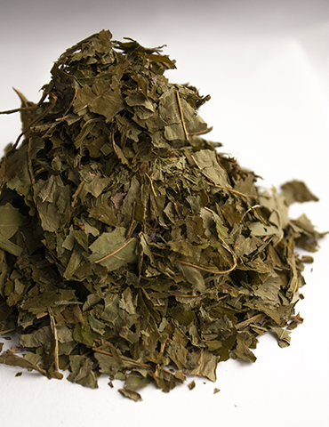 Green Fireweed tea